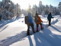 bergprofi.ch: geführte Schneeschuhwanderungen, Gletschertouren, Bergtouren, Klettertouren, Kletterausbildungen
