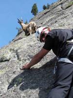bergprofi.ch: Klettertraining, geführte Gletschertouren, Bergtouren, Klettertouren, Kletterausbildungen
